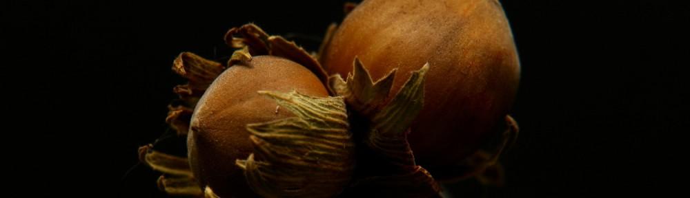 Red Nuts / Мысли Позитивно!